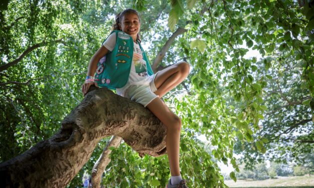 Girl Scout's Virtual Map Explores State Parks
